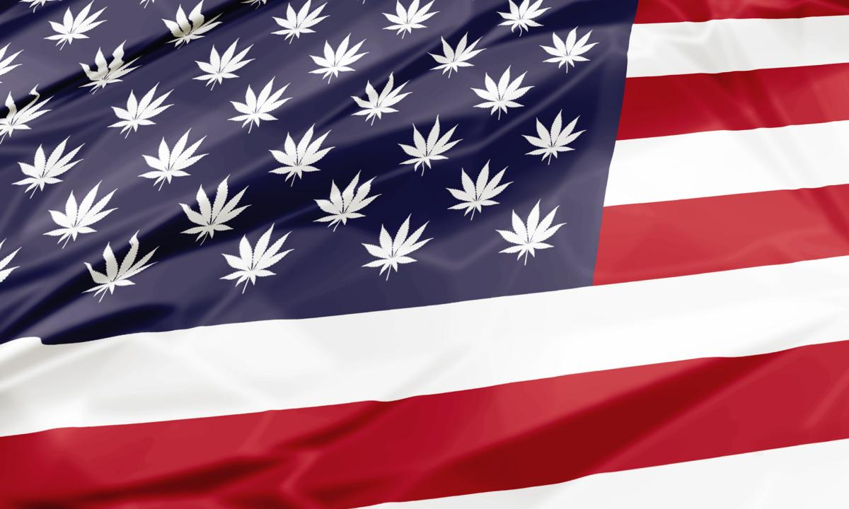 The US flag is shown with cannabis leaves in place of the stars.