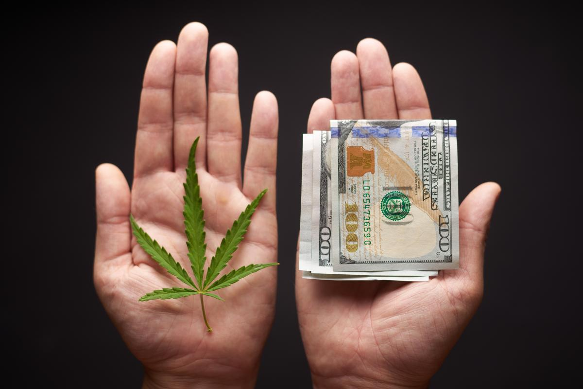 An image of two hands is shown. The left hand holds a single cannabis leaf. The right hand holds a wad of money.