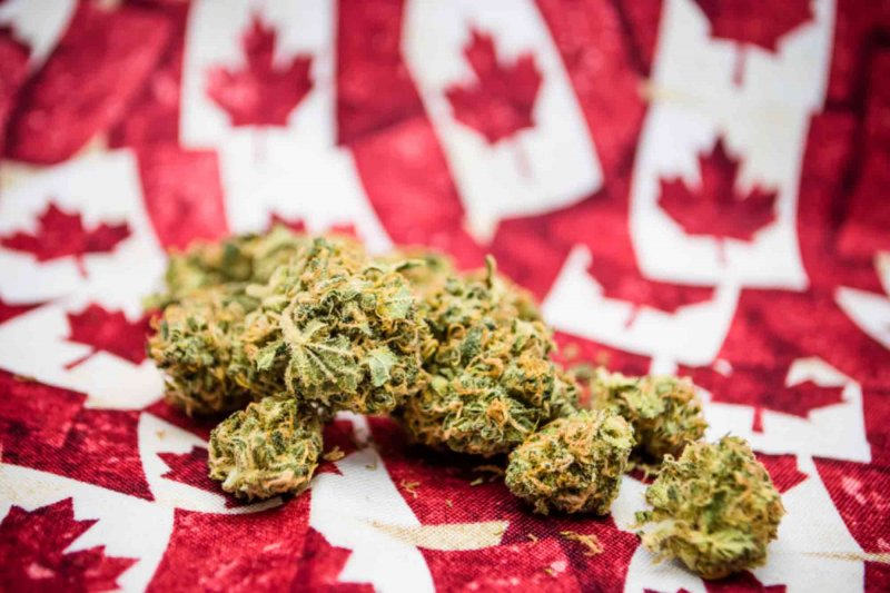 Canada Introduces Cannabis Legalization Framework – The Chill Bud