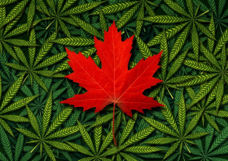 Canada S Big Financial Institutions Are Warming Up To Cannabis