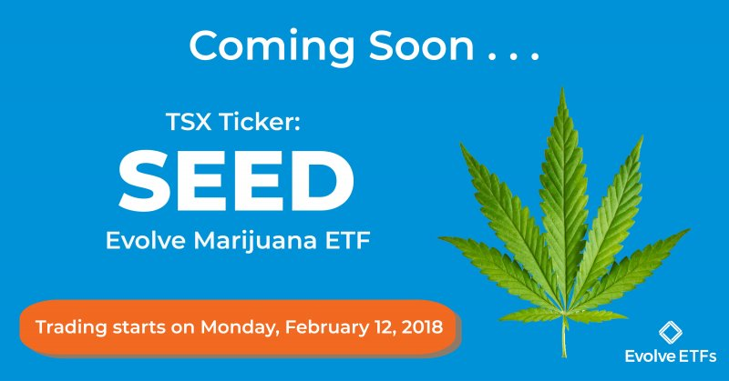 Cannabis stock report marijuana index gains 18 percent green planting seeds all over social media source evolve funds group inc biocorpaavc Images