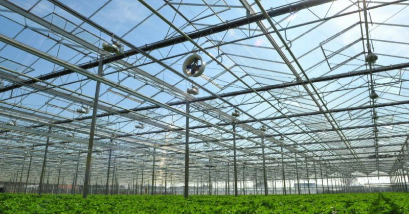 The New Cannabis Greenhouse Coming To California Potnetwork