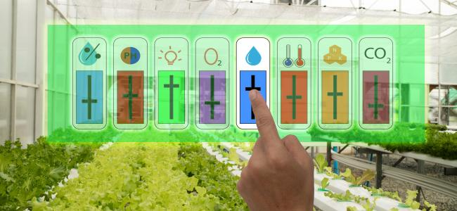 An image of a greenhouse filled with plants where a farmer is using augmented reality to control the temperature and lighting in the greenhouse is shown.