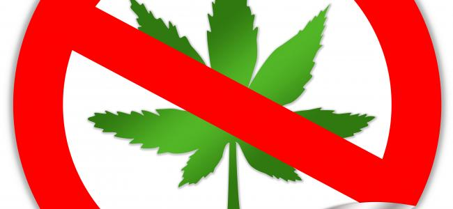 An image of a cannabis leaf enclosed in a red circle with a slash across the leaf is shown.