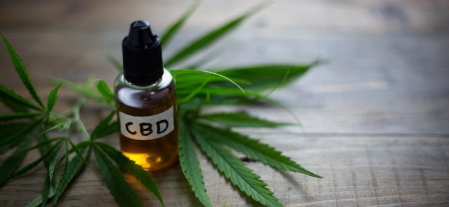 CBD oil proves a big draw at the CWCBExpo in New York City