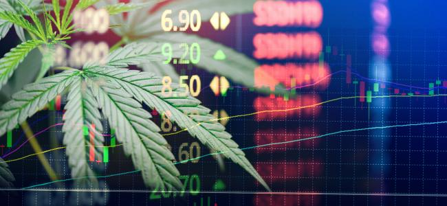 Marijuana stocks weekly investor roundup: Analysis of the week's most important events in the cannabis industry (June 1))