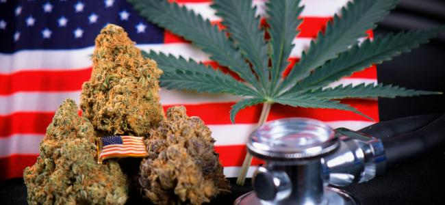 Protection or Pain Treatment: Choosing Between Your Gun and Medical Marijuana