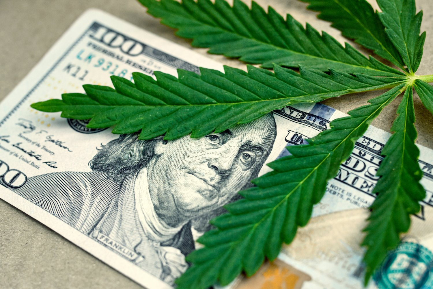 https://www.potnetwork.com/news/treasury-secretary-calls-marijuana-friendly-banking