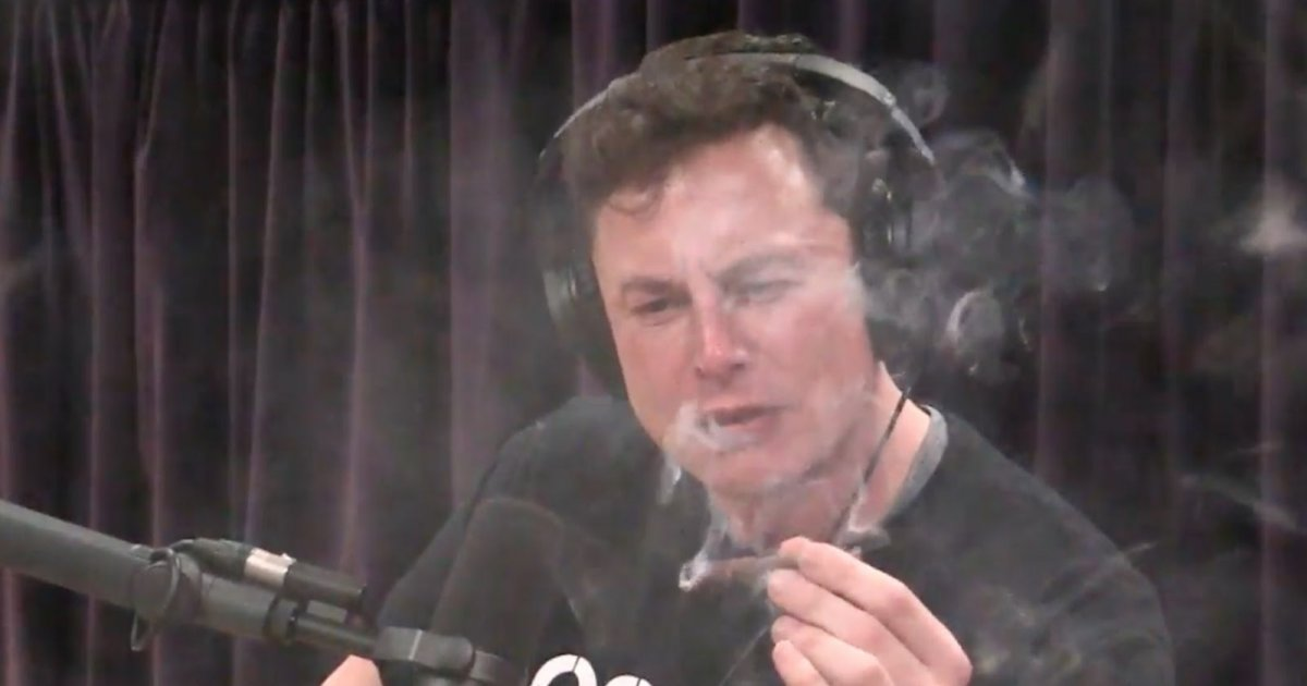 Elon Musk smokes weed and all hell breaks loose