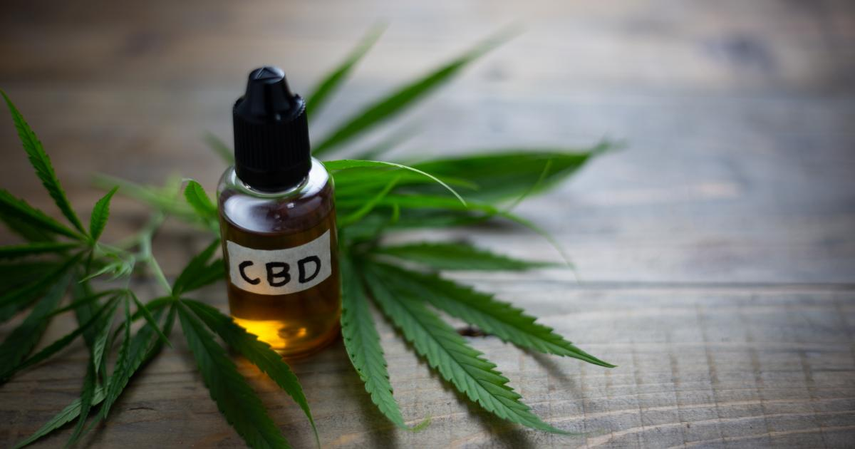 Cbd Oil Proves A Big Draw At The Cwcbexpo In New York City Potnetwork